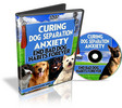 Thumbnail Curing Dog Separation Anxiety (Video PLR)