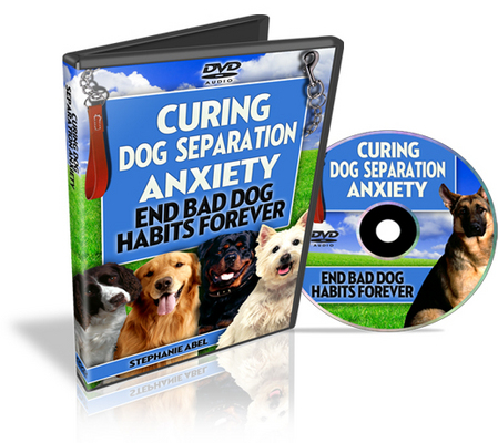 Product picture Curing Dog Separation Anxiety (Video PLR)