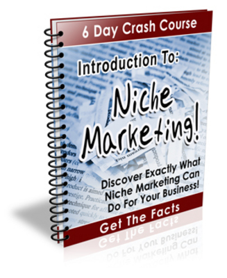 Product picture Introduction To Niche Marketing 6 Day Crash Course